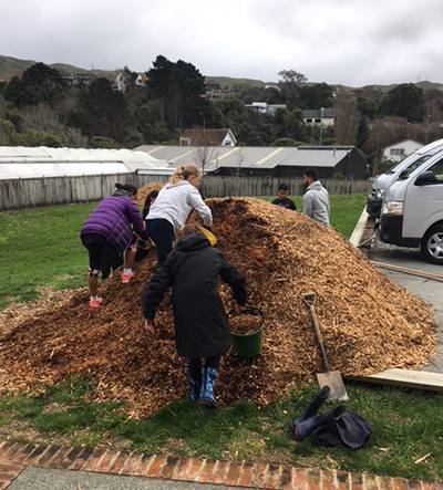 St Brigid's school pupils moving mulch